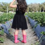 TIPS FOR STRAWBERRY PICKING WITH TODDLERS AT JG RANCH