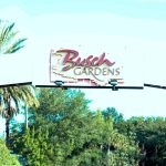 A DAY OUT WITH TODDLERS IN BUSCH GARDENS TAMPA