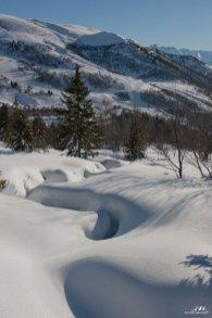 SFL hiver 1