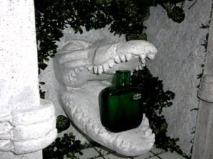 cocodrilo terminado