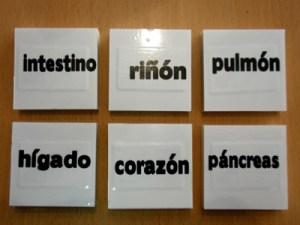 Tacos nombres