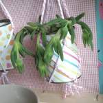 diy-deco-cadre-vegetal-Creamalice