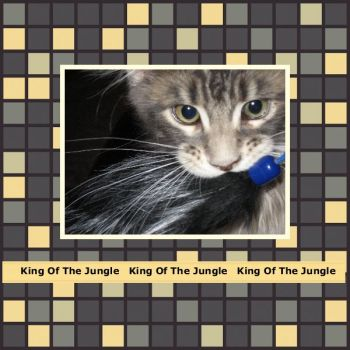 Tsuanmi - King Of The Jungle