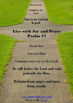 Psalm 37 - Joy and Peace Cross