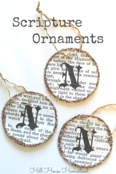 Scripture Ornaments