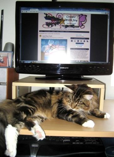 2 - Magellan At Computer