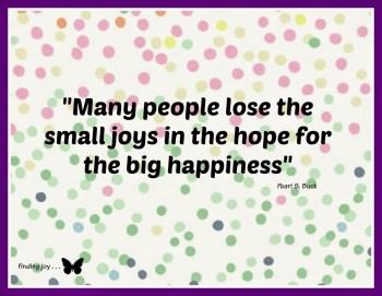 Small Joys