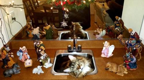Modern Day Nativity Scene