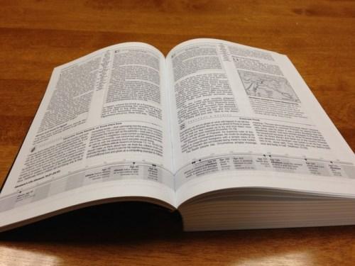 Africa Study Bible - Interior