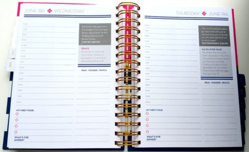 Anchored Press Planner Daily Pages - L