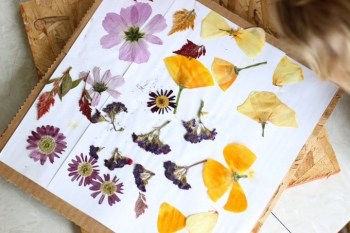 DIY Flower Press