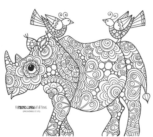 niv-wonders-of-creation-holy-bible-rhino