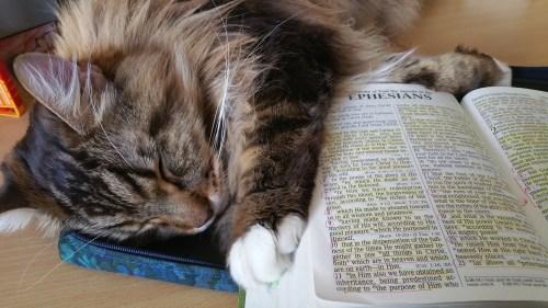 Magellan-Bible-1