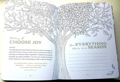 Tranquility - Choose Joy 2