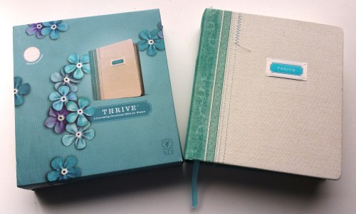 Thrive Feature-Create-With-Joy-1L