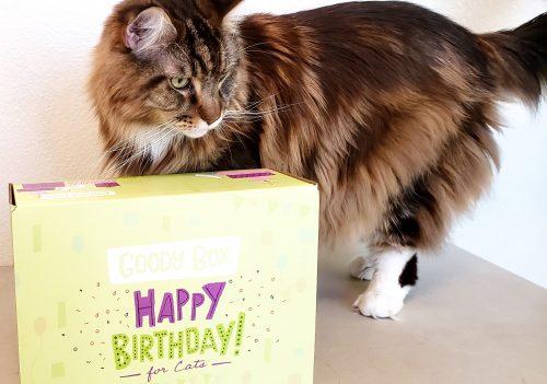 Magellan-CreateWithJoy-BirthdayBox2