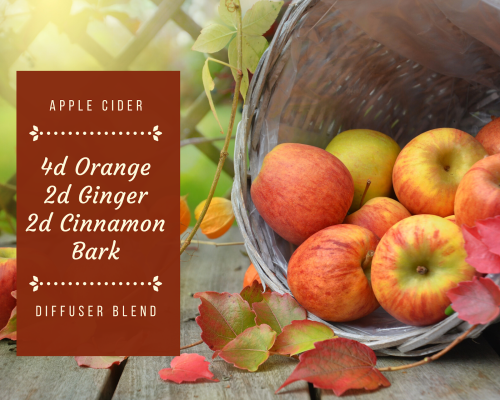 Tina Peterson - Apple Cider Diffuser Blend