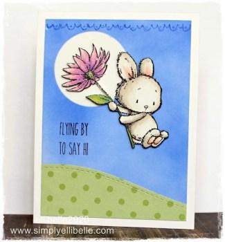 Hi Card