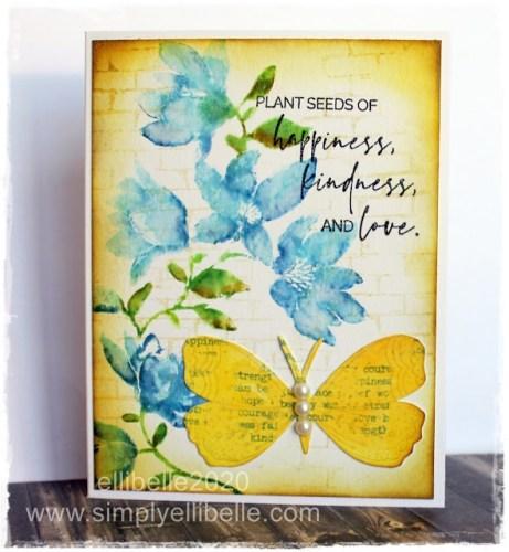 Plant Seeds Card