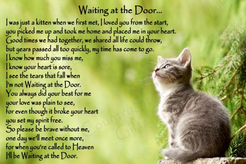 Waiting At The Door Poem