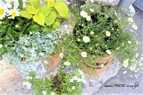 Burlap Container Gardening
