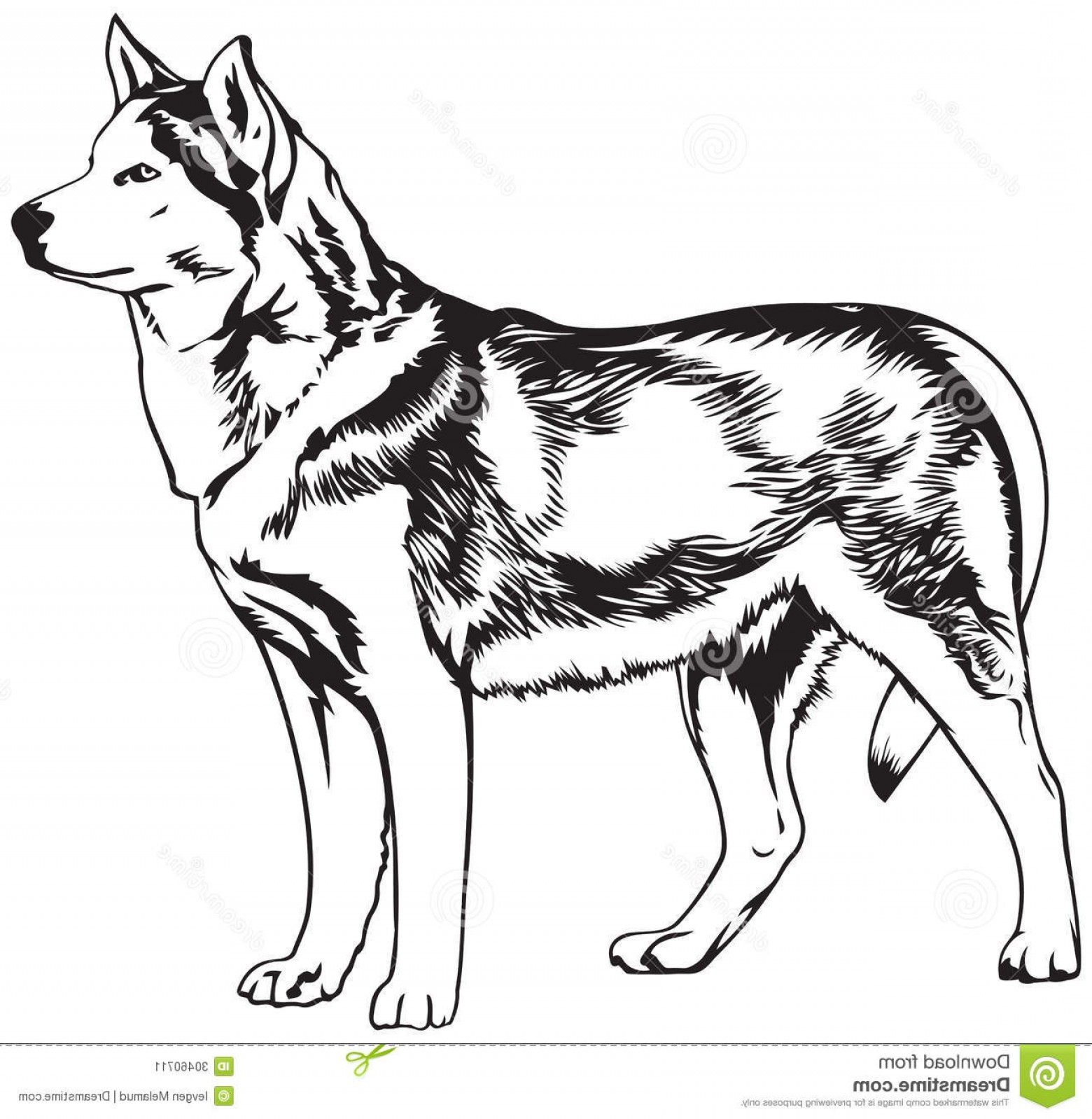 Husky Sitting Silhouette Vector