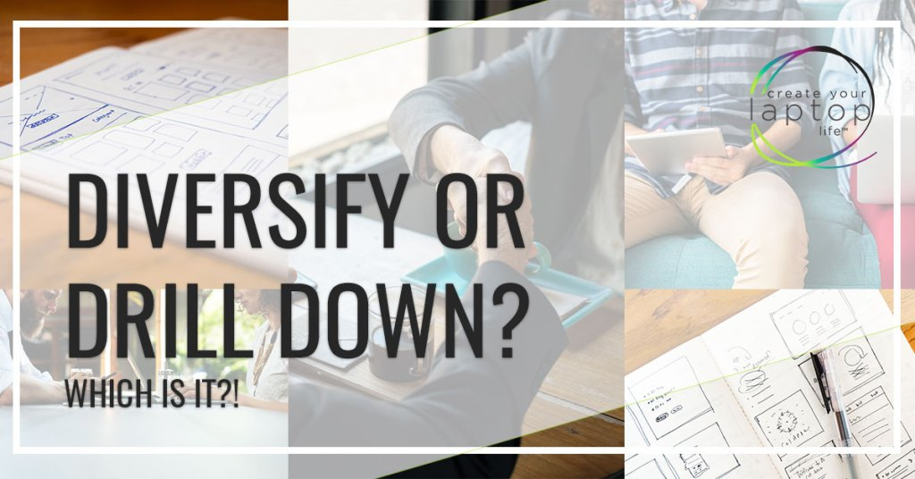Should You Diversify Revenue Streams or Niche Down?