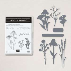 Nature's harvest bundle from Stampin' Up!