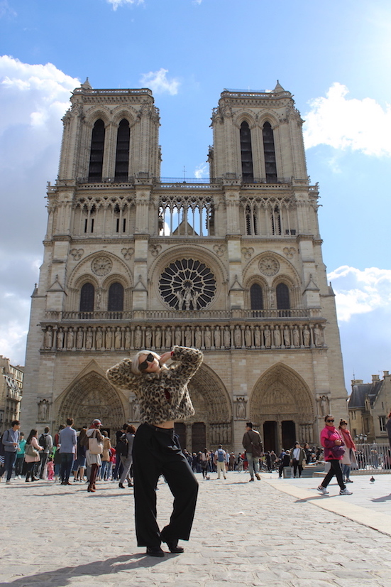 Notre Dame Cathedral - Paris Sightseeing