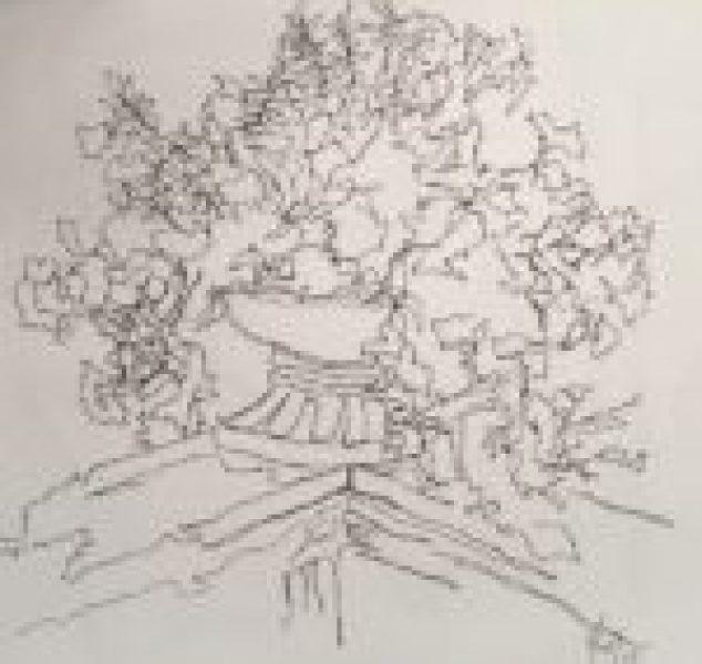 Deck Plant