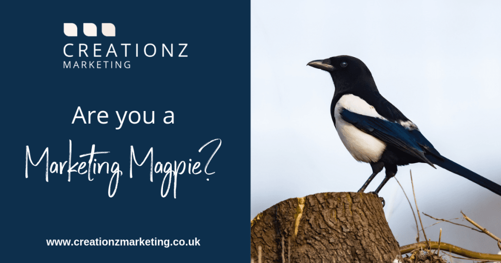 Are you a Marketing Magpie - Creationz Marketing, Beeston, Nottingham, Nottinghamshire
