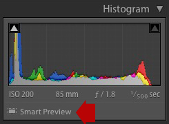 Lightroom Develop module showing Smart Preview icon under histogram