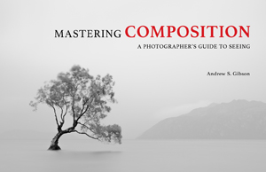 Mastering Composition ebook cover
