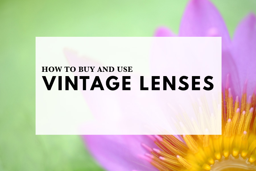 How to buy and use vintage lenses