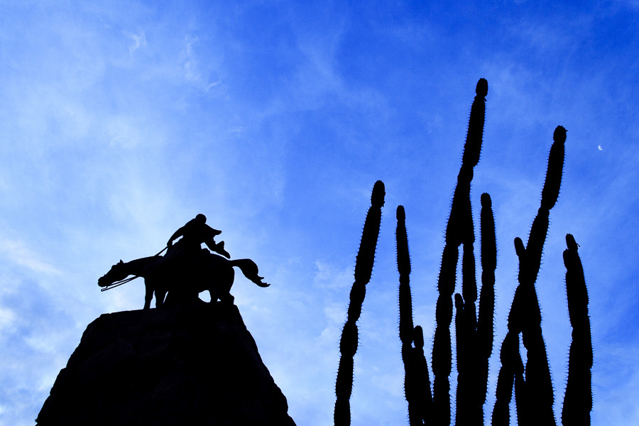 Photo of a silhouetted cactus and statue showing how exposure works