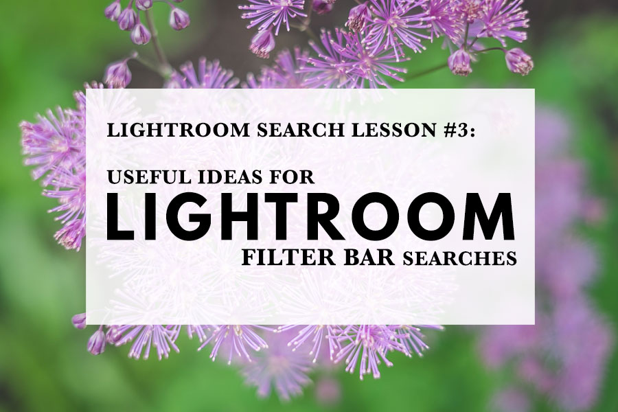 Useful Ideas For Lightroom Filter Bar Searches