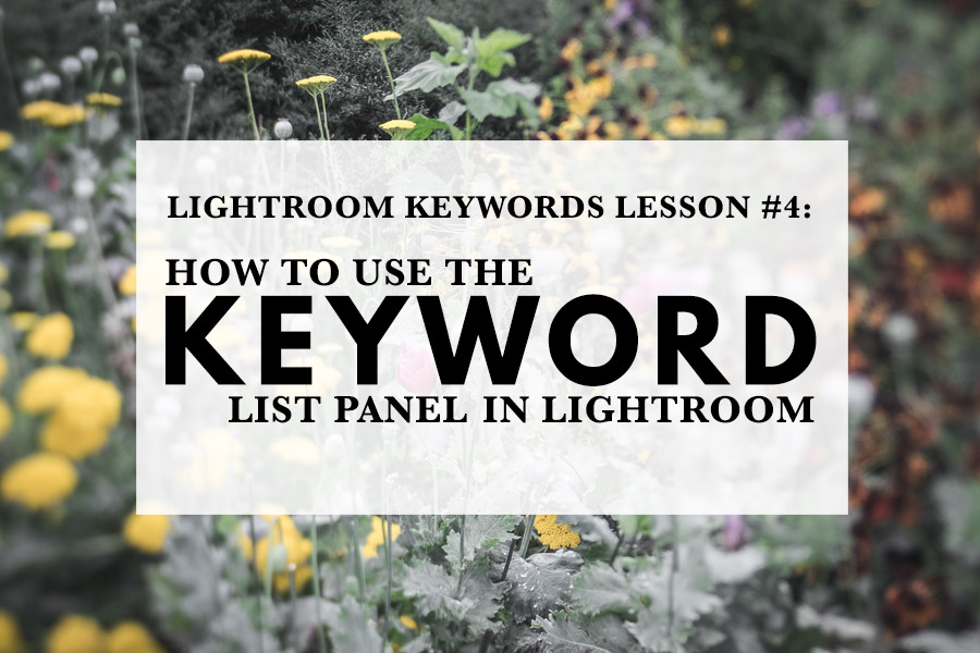 How To Use The Keyword List Panel In Lightroom