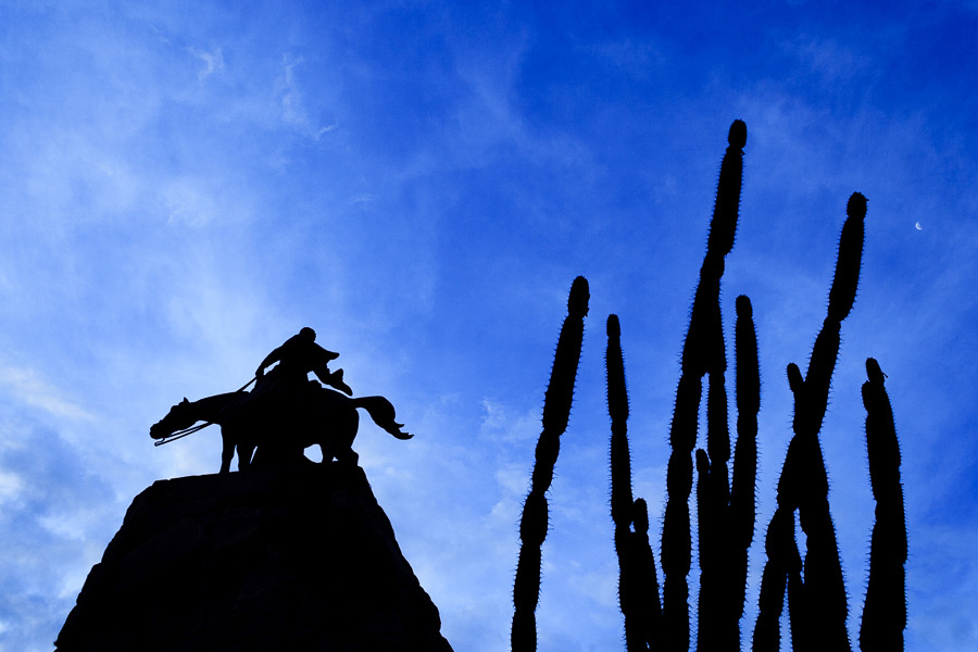Dramatic silhouette of statue and cactus