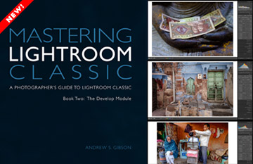 Mastering Lightroom Classic ebook