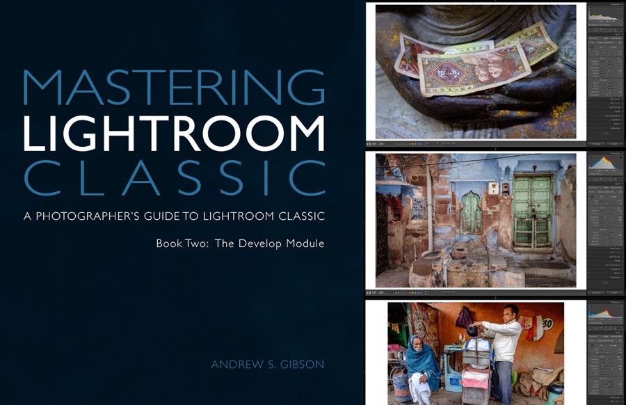 Mastering Lightroom Classic Develop Module ebook