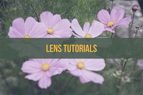 Lens tutorials