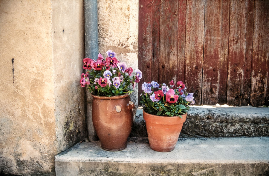 Digitized slide French flower pots