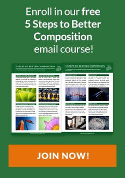 Free composition course