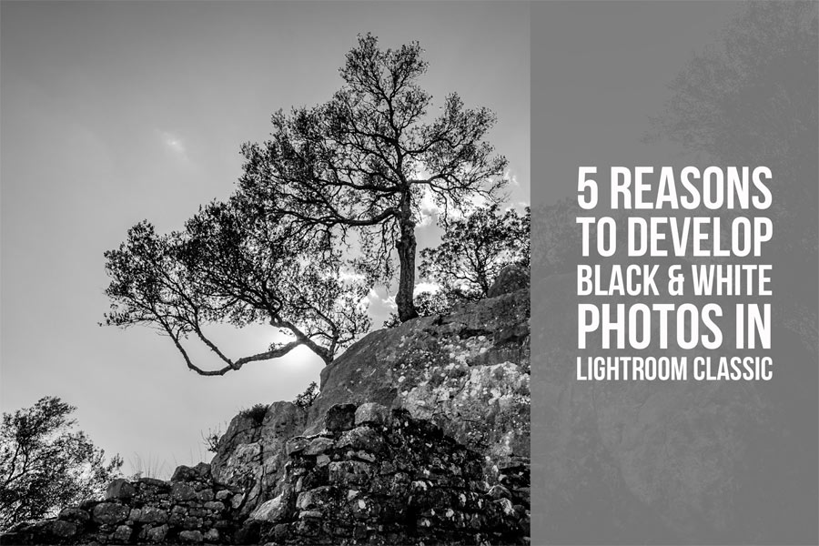 5 Reasons to Develop Black & White Photos in Lightroom Classic
