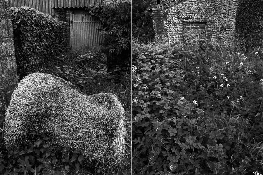 Black and white photos