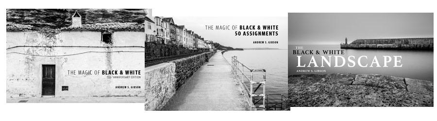 The Magic of Black & White ebook bundle