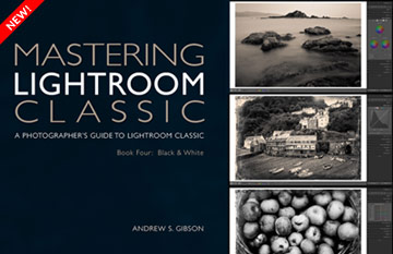 Mastering Lightroom Classic ebook