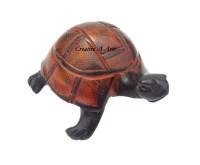 TortoiseKisiiSide