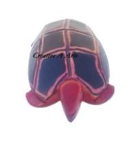 TortoiseRedHeadFront