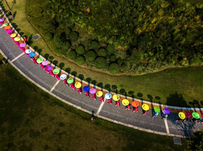 New flowers in the garden: On October 29, 2017, the local cultural group held a cheongsam show at the national park in Guigong City, Guangxi Province, China. From the perspective of an aerial photography it looks like a wonderful new kind of flowers. Copyright: © Shifang Lin, China, Shortlist, Open, Culture (Open competition), 2018 Sony World Photography Awards
